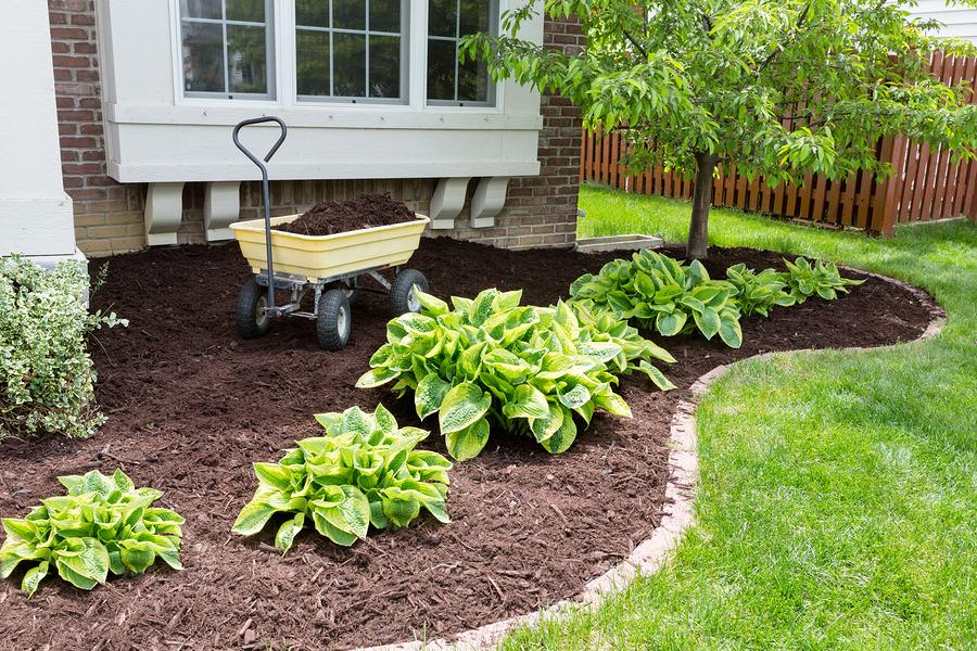 Spring home maintenance checklist - Gardening works in october winter preparations ...