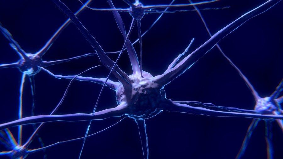 Neuron.