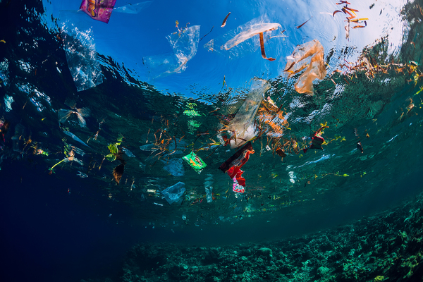 Ocean filled with plastic.
