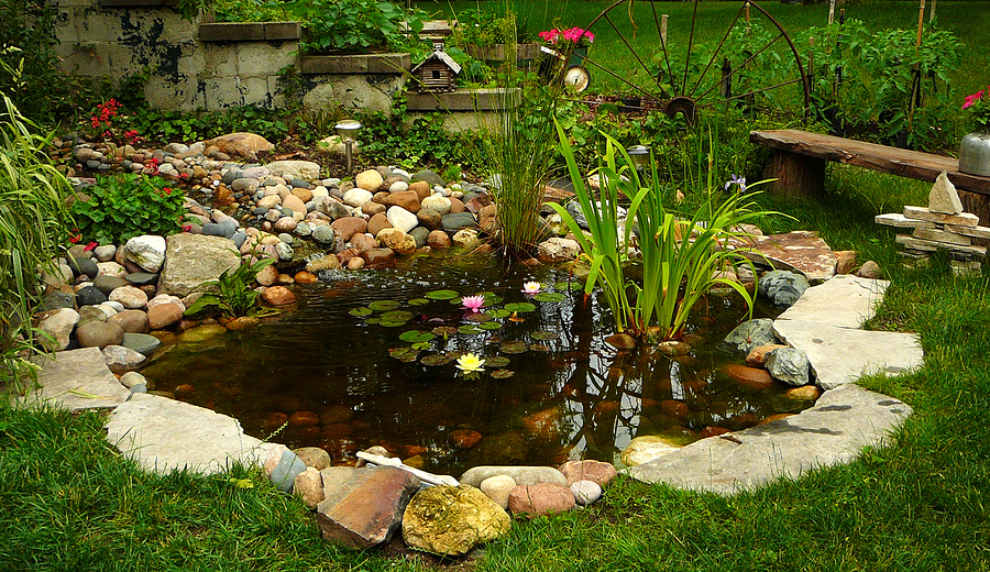 Maintaining your water features in the fall for Maintaining a garden pond