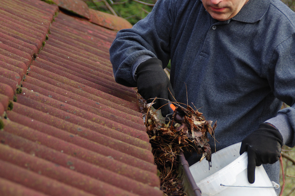 Cleaning leaves out of gutters.