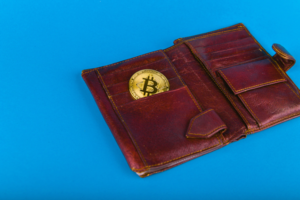 Leather wallet and gold coin with a bitcoin symbol.