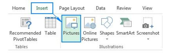 Excel screen shot of Insert pictures box.