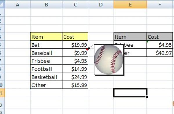 Excel spreadsheet screen shot of an image next to data.