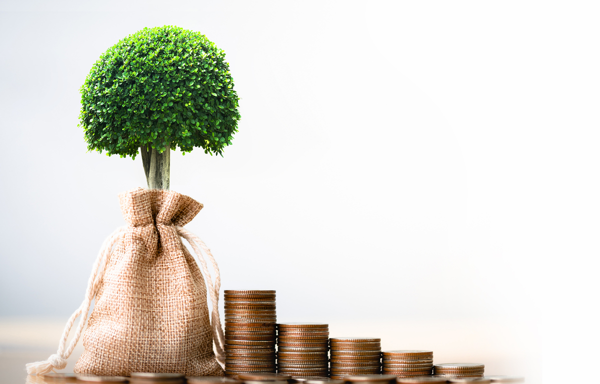 Stacks of coins and a plant in a burlap bag.