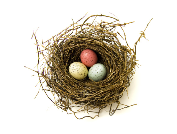 Bird nest with three eggs.