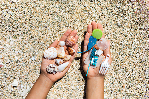 Hand holding a bunch of sea shells, and another hand holding plastic broken pieces.