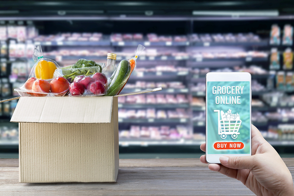 Person grocery shopping online using their phone.