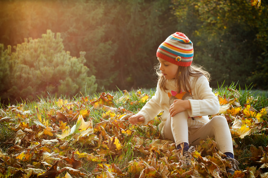 Indoor air quality tips for fall