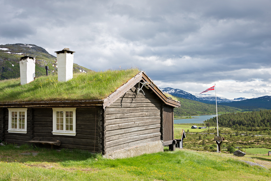 The Many Benefits Of Green Roofs