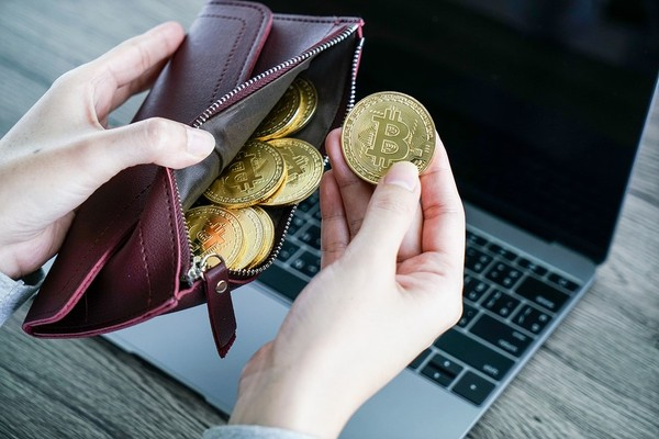 what wallet holds all cryptocurrency