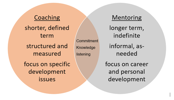 Executive Coaching Diagram