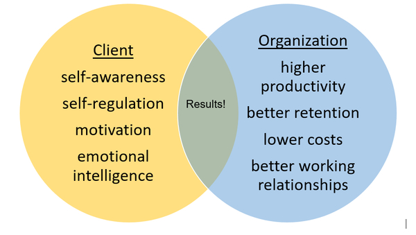 Executive Coaching Strategy Diagram