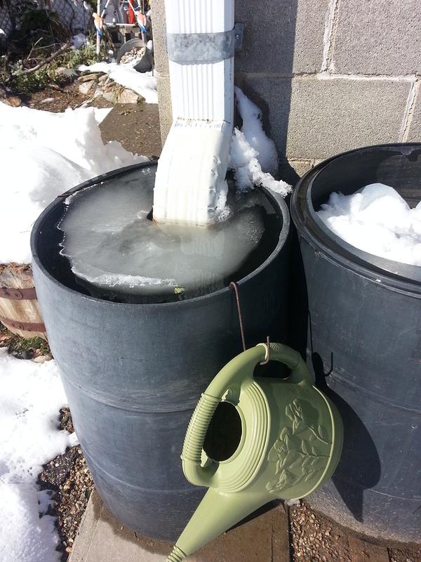 Maintaining Your Rain Barrel