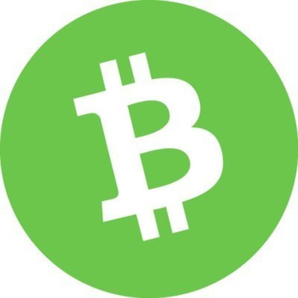 Bitcoin cash logo.