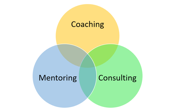 coaching leadership skills Leadership coaching can show you how leadership coaching is an essential tool for coaches you'll learn the foundational coaching skills and best pratices the following seven key areas.