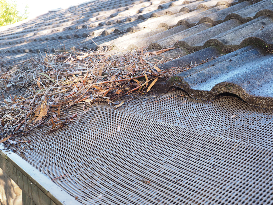 Keeping Gutters Clear While Leaves Are Falling