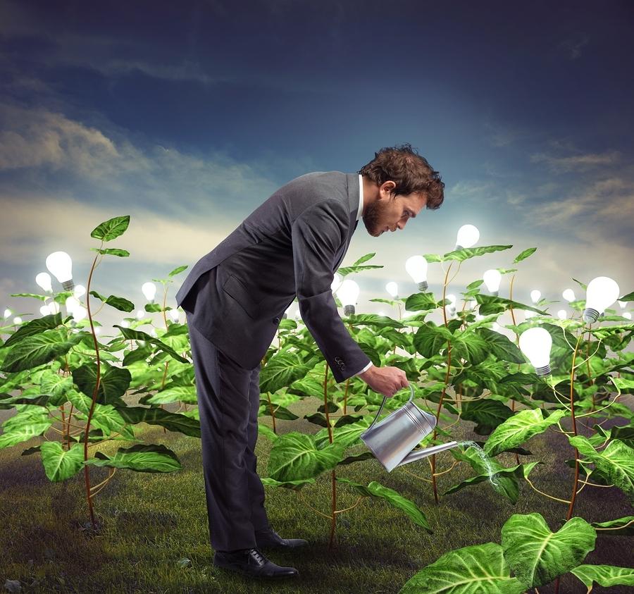 Customer nurturing