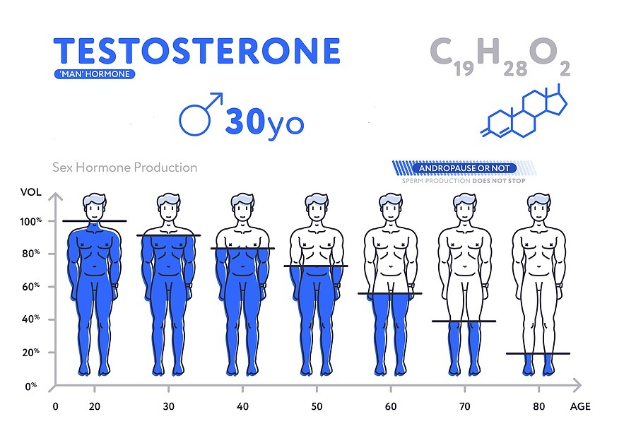 Testosterone chart by age.