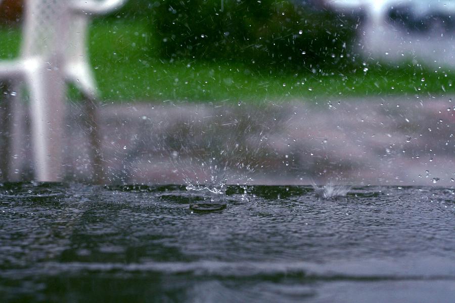 Get Your Garden Ready For El Nino