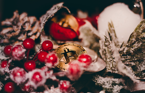 Gold coins with bitcoin symbols and red berries.
