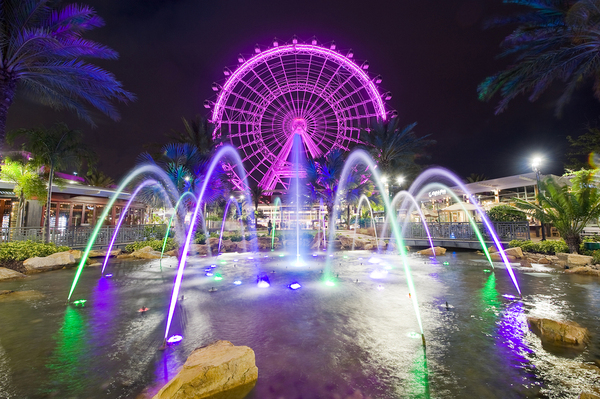 The Orlando Eye and other great Florida family activities.