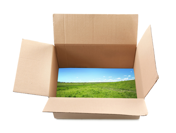 Cardboard box with an image of grass and blue sky at the bottom.