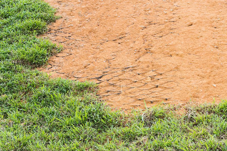 Spring erosion in your garden