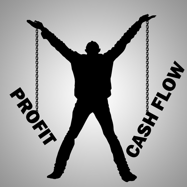 man holding two chains that say profit and cash flow