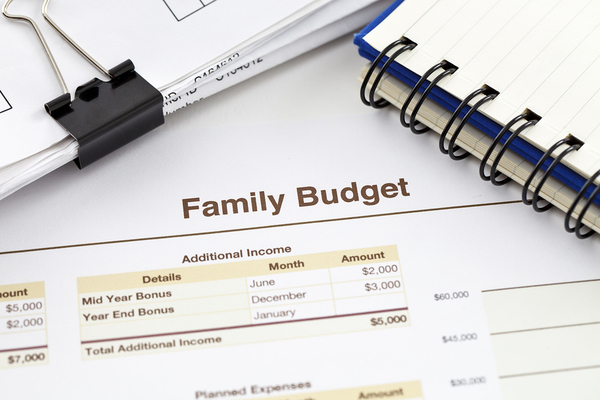 Family budget document.
