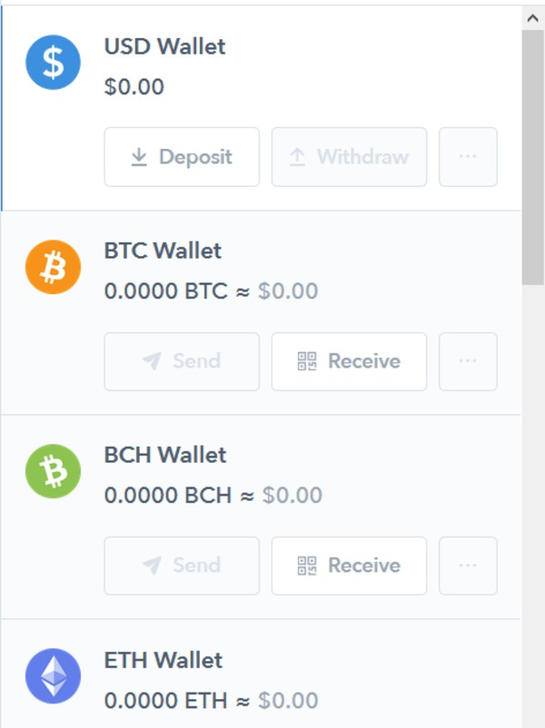Screen showing wallet balance.