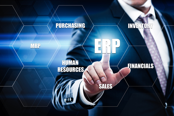 ERP for CEO