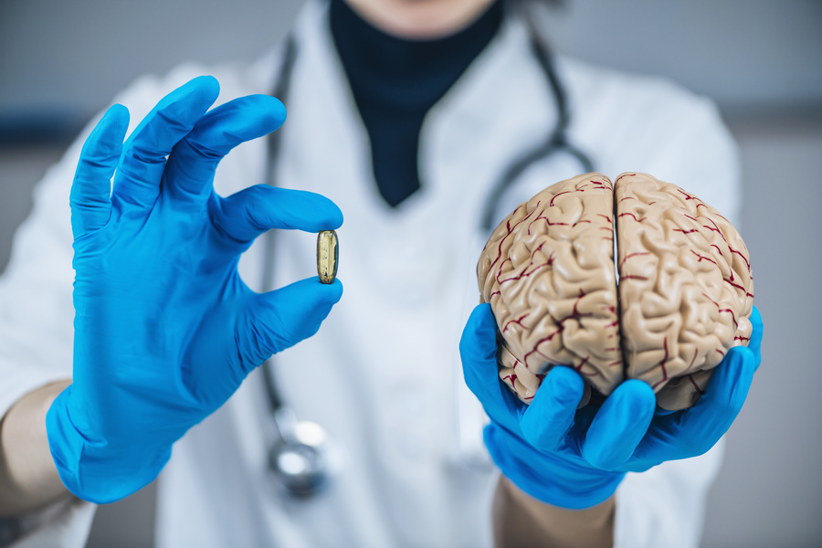 Model of a human brain.