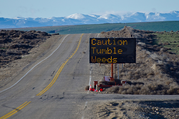 Caution tumble weeds sign.