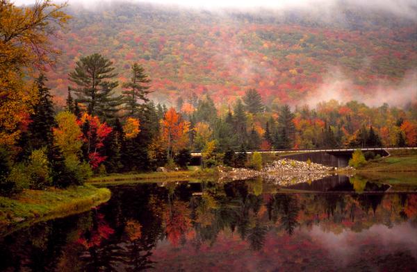 Real estate license in New Hampshire